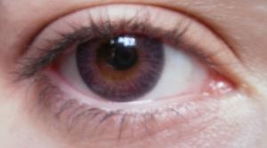 colouvue lenses violet blends